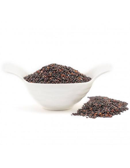 Semi di Quinoa nera